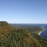 gaspe forestry